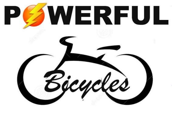 Mecanico de bicicletas electricas