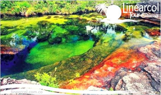 Fotos de Vacaciones y turismo por caño cristales 3