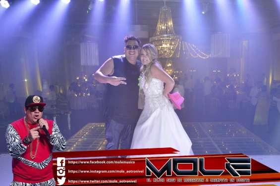 Mole, artista urbano colombiano exparticipante del reality del canal caracol a otro nivel.  lo mejor para las fiestas empresariales, fiestas de fin de año, proms, matrimonios & quince años.  su show es una fusion de ritmos en reggaeton, champeta y salsa ch