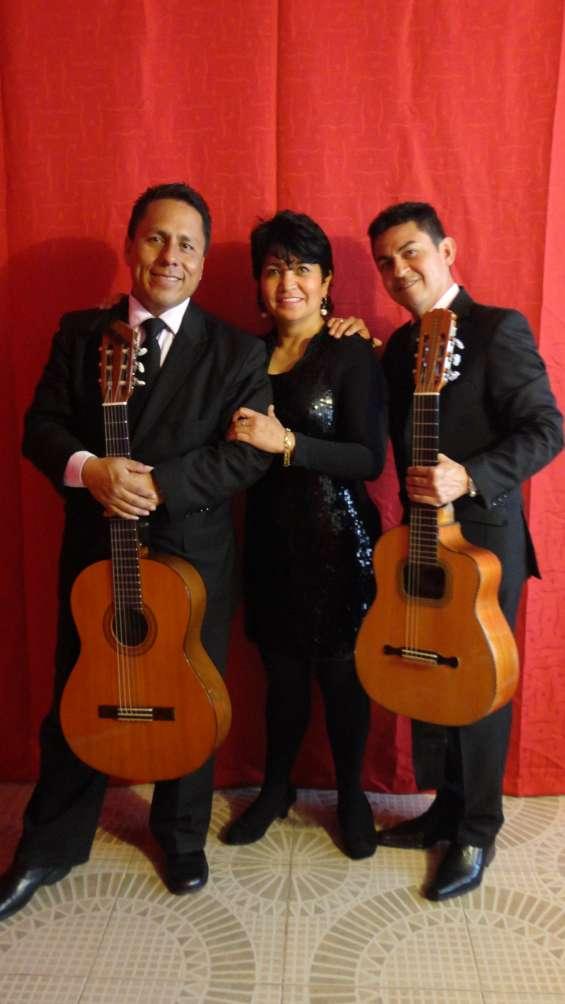 Trio bogota, musica de cuerda, boleros, tangos, pasillos y mas