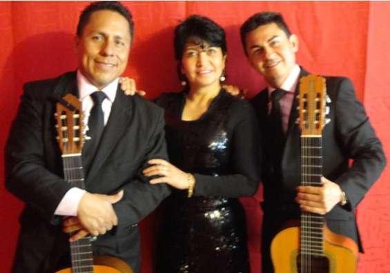Serenata de aniversario, trio musical latino son 3. musica de cuerda