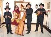Grupo Llanero - Serenatas musica llanera en Bogota 3142196105