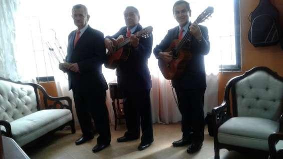 Serenatas, trio bogota, boleros, tangos, pasillos, musica en vivo