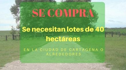Se necesitan lotes de 40 hectáreas en cartagena