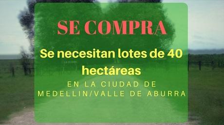 Se necesitan lotes de 40 hectáreas