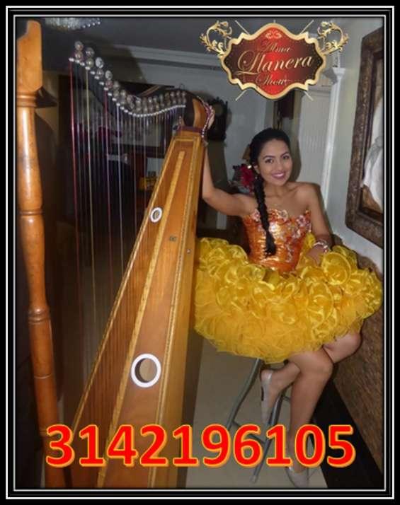 Serenata llanera de cumpleaños 3142196105