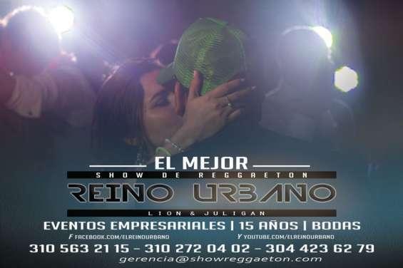 Fotos de Show de reggaeton quince años reino urbano 13