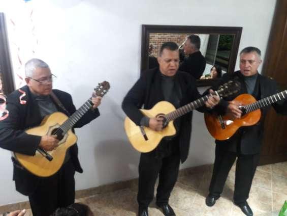 Trio musical en medellin